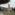 Albino Beltrame – Testimone dell'eccidio di Bassano